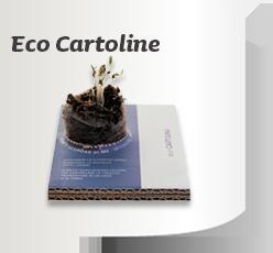 Ecocartoline